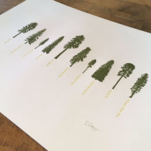 "Load image into Gallery viewer, Green Bird Press Letterpress Print - ""A Few Conifers"""