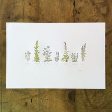 "Load image into Gallery viewer, Green Bird Press Letterpress Print - ""A Few Wildflowers"""
