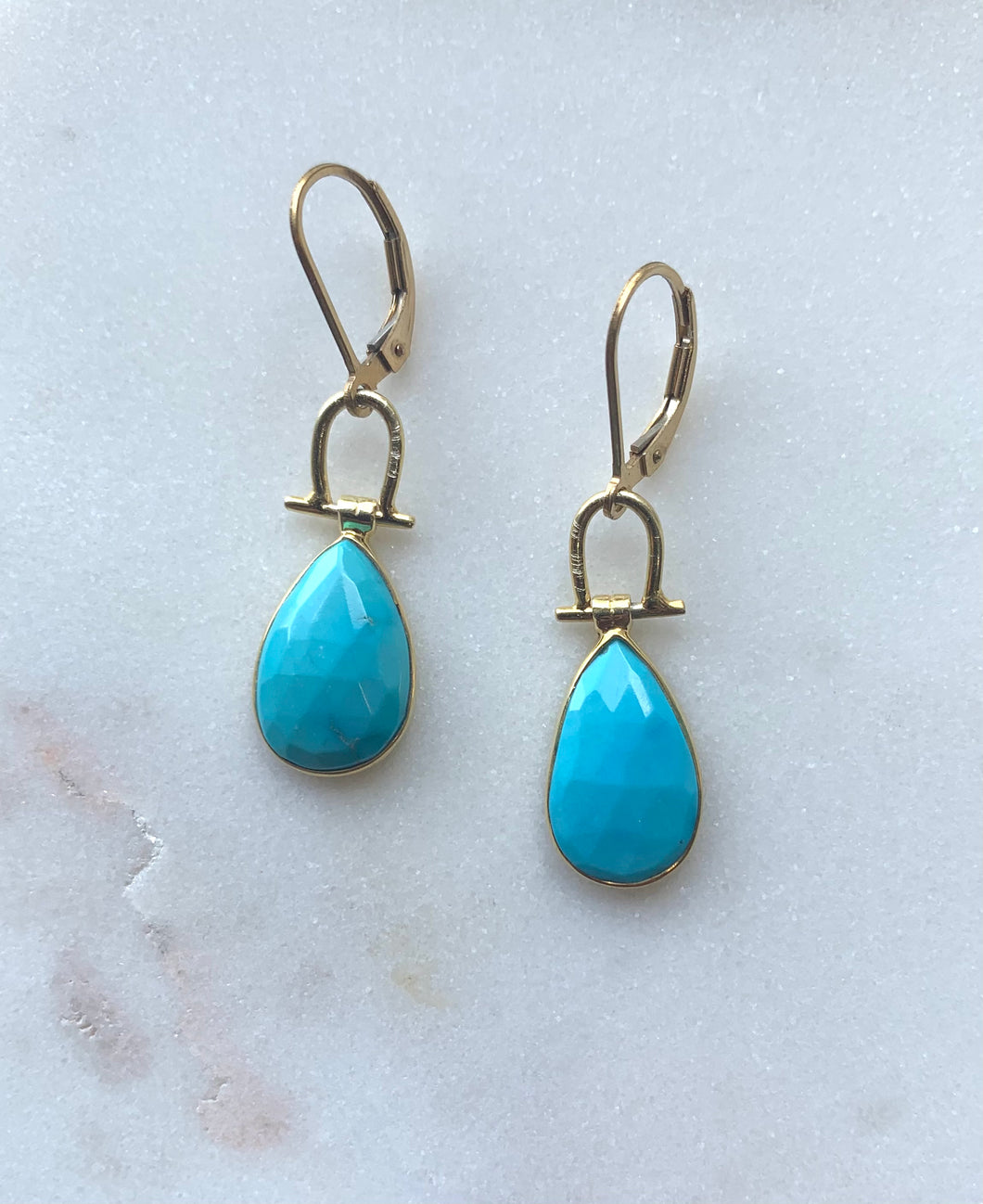 Flying Lizard Turquoise Earrings