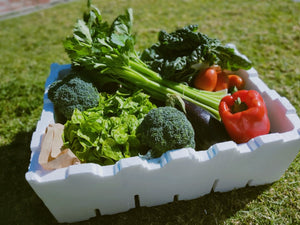 XL Vegetable Box