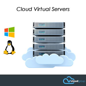 vCloud Virtual Cloud Servers - Dedicated Virtual Server