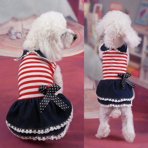 Pet Dog Dress