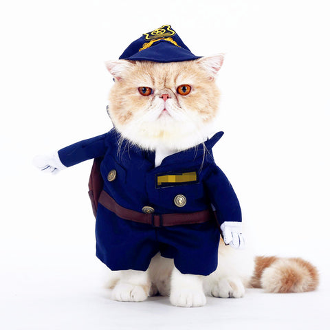 The Public Service Cat Costume