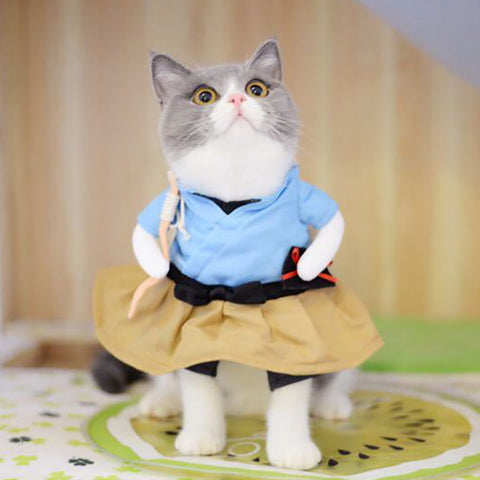 Fashionista Cat Costume