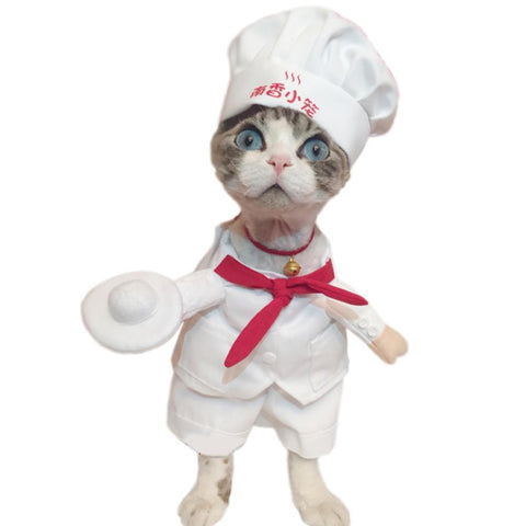 The Chef Cat & Dog Costume