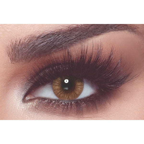 Brown Contact Lenses Bella Almond Brown - 1 Day Use