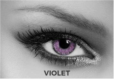 Violet Contact Lenses Soleko - Queen's Twins Violet 1 Month