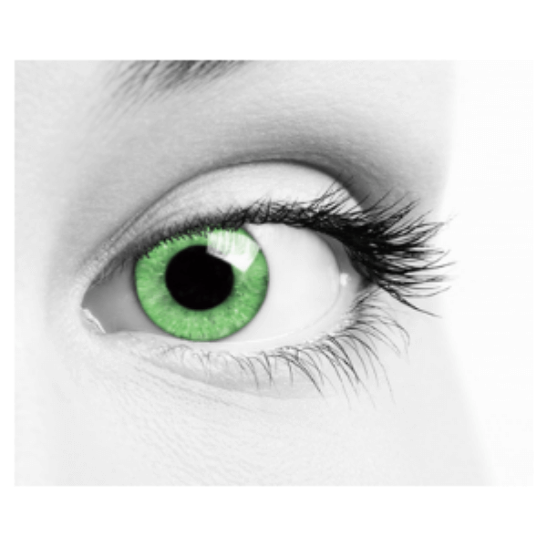 Green Contact Lenses Soleko Queen's Oros Warm Green - 1 Month Use