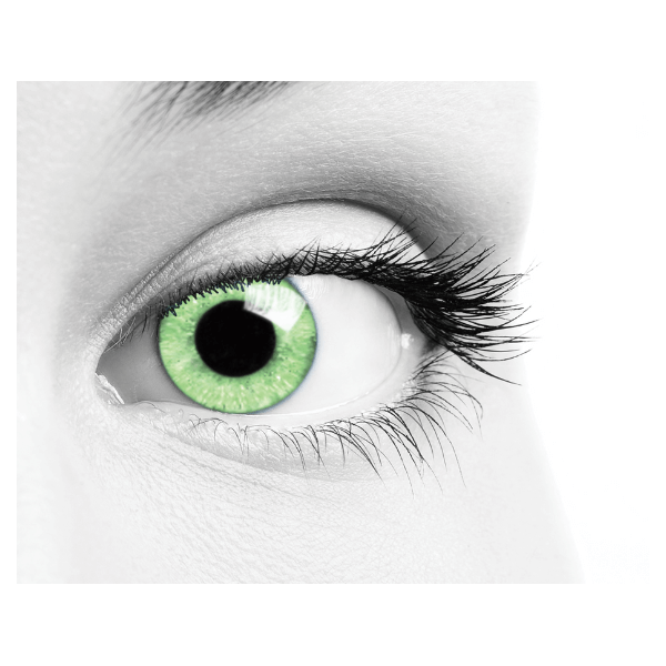 Green Multifocal Contact Lenses Soleko - Queen's Solitaire Light Green 3 Months