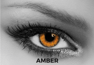 Brown Contact Lenses Soleko - Queen's Trilogy Amber 1 Month