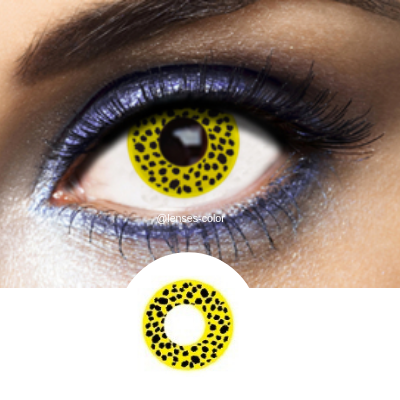 Yellow Contacts Cheetah - Crazy Lenses of 1 Year Use