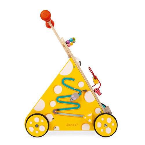 Multi-Activities Cat Baby Walker