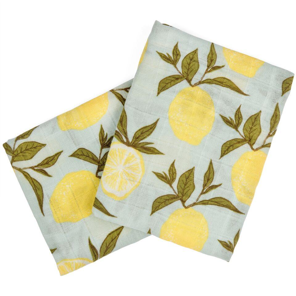 Organic Cotton Burpies Blue Lemon