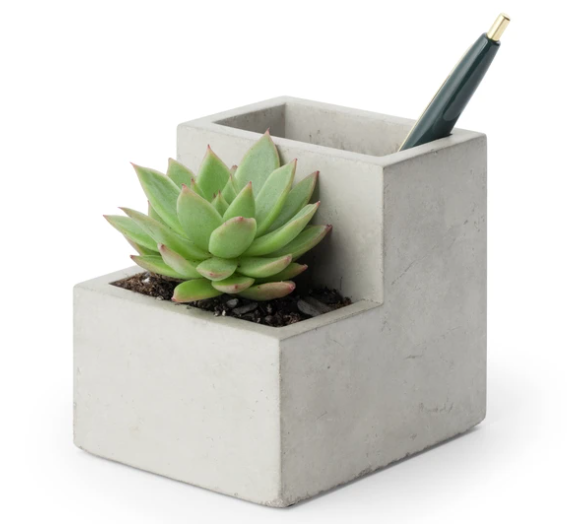 Small Desk Planter / Pen Holder Concrete