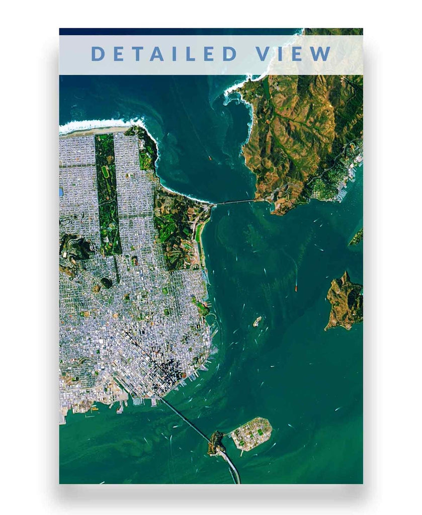 San Francisco Bay Global Eye Print