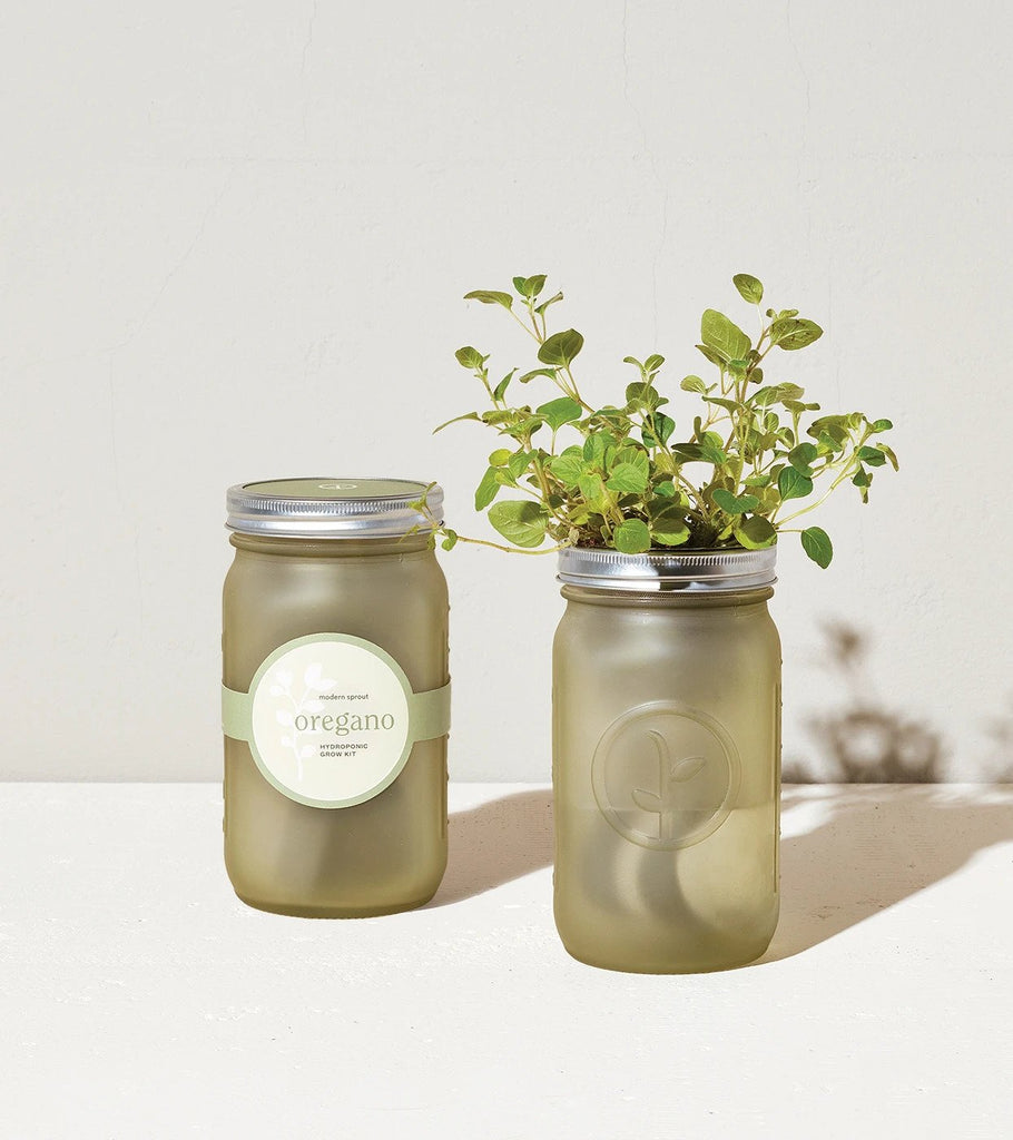 Garden Jar Oregano Indoor Garden Kit