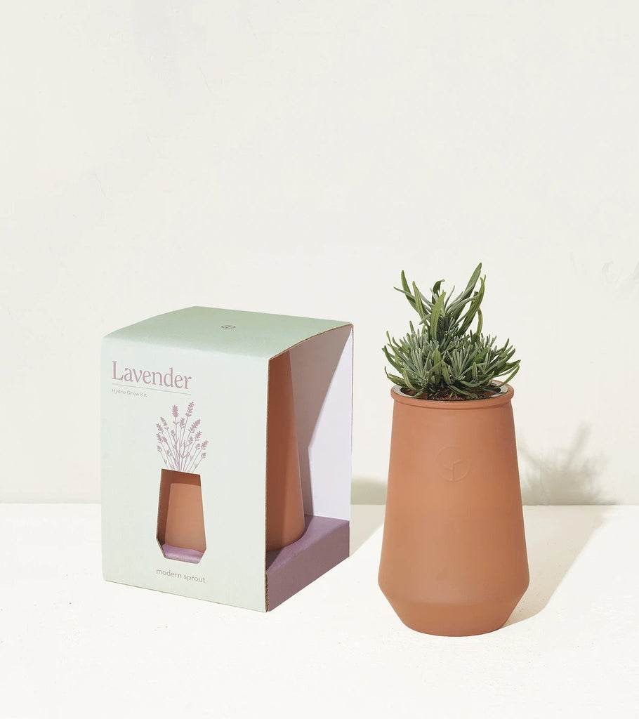 Tapered Tumbler Lavender Grow Kit