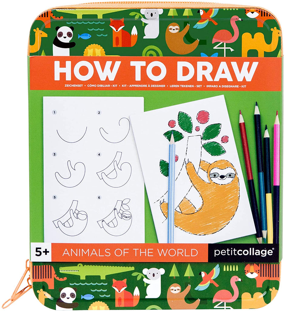 How to draw animals of the world kit