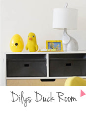 Dily's Duck Room