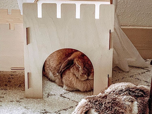TokiHut Wooden Rabbit Castle and Bridge Set™️