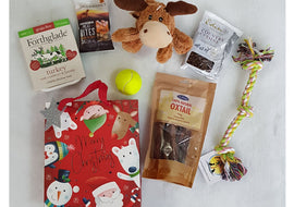 Christmas Gift Bag for Dogs