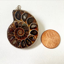 Load image into Gallery viewer, Ammonite Sterling Silver Pendant