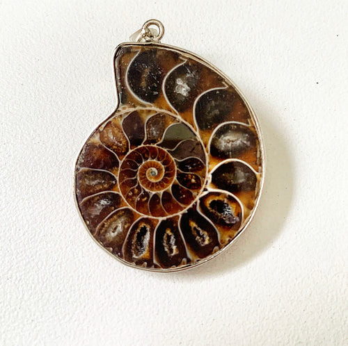 Ammonite Sterling Silver Pendant
