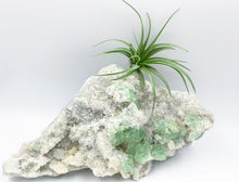 Load image into Gallery viewer, Self Standing XL Fujian Province Sea Foam Green Fluorite on Quartz Matrix