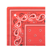 Party Napkin - Paisley Print