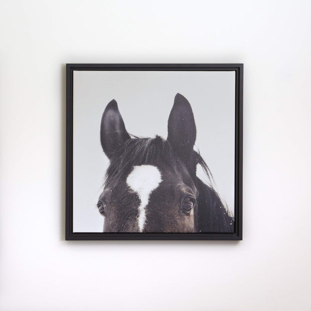 All Ears Framed Canvas Print