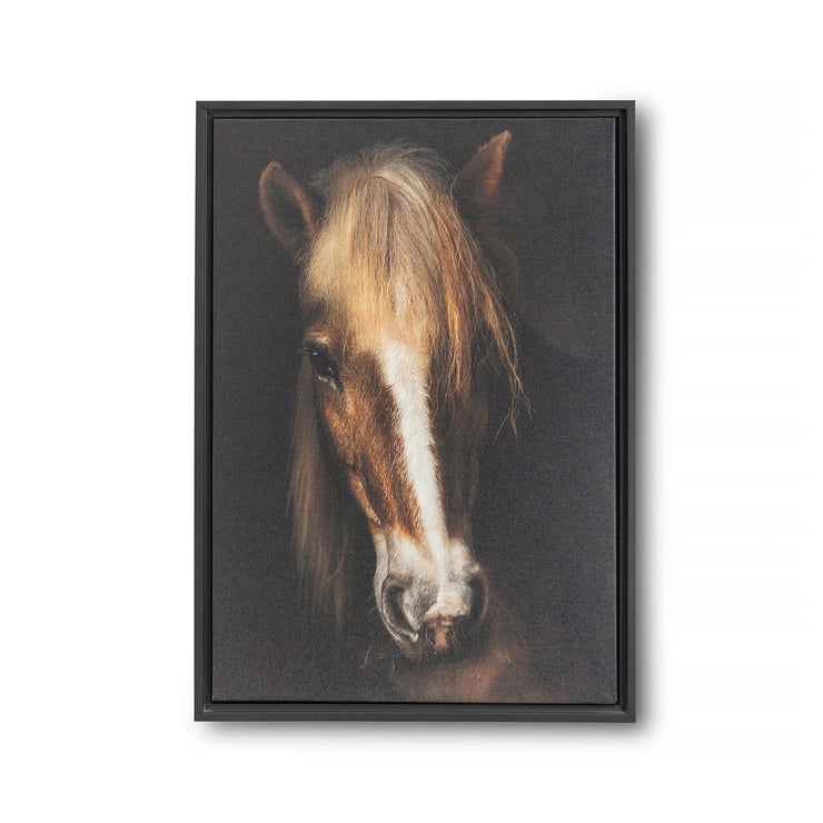 Farmhouse Horse Framed Canvas Art