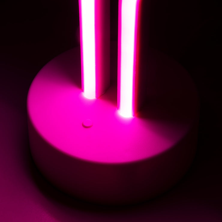 Decor - Neon Flamingo Light