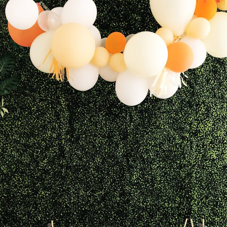 Tangerine Crush - DIY Balloon Garland Kit