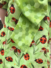 Load image into Gallery viewer, Permanent Preorder - Spring - Ladybugs Green Geos