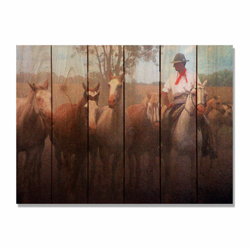 Argentine Gaucho - South American Wood Wall Art DaydreamHQ FenceEscape 33x24