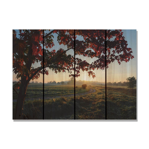Autumn Sunset - Contrasted Tree Wood Wall Art DaydreamHQ FenceEscape 22x16