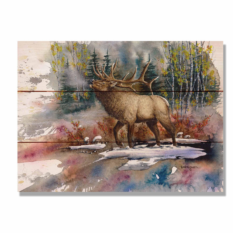 "Bartholet's Autumn Music - Classic Pine Wood Artist Series DaydreamHQ Pine Wall Art 15""x11"""