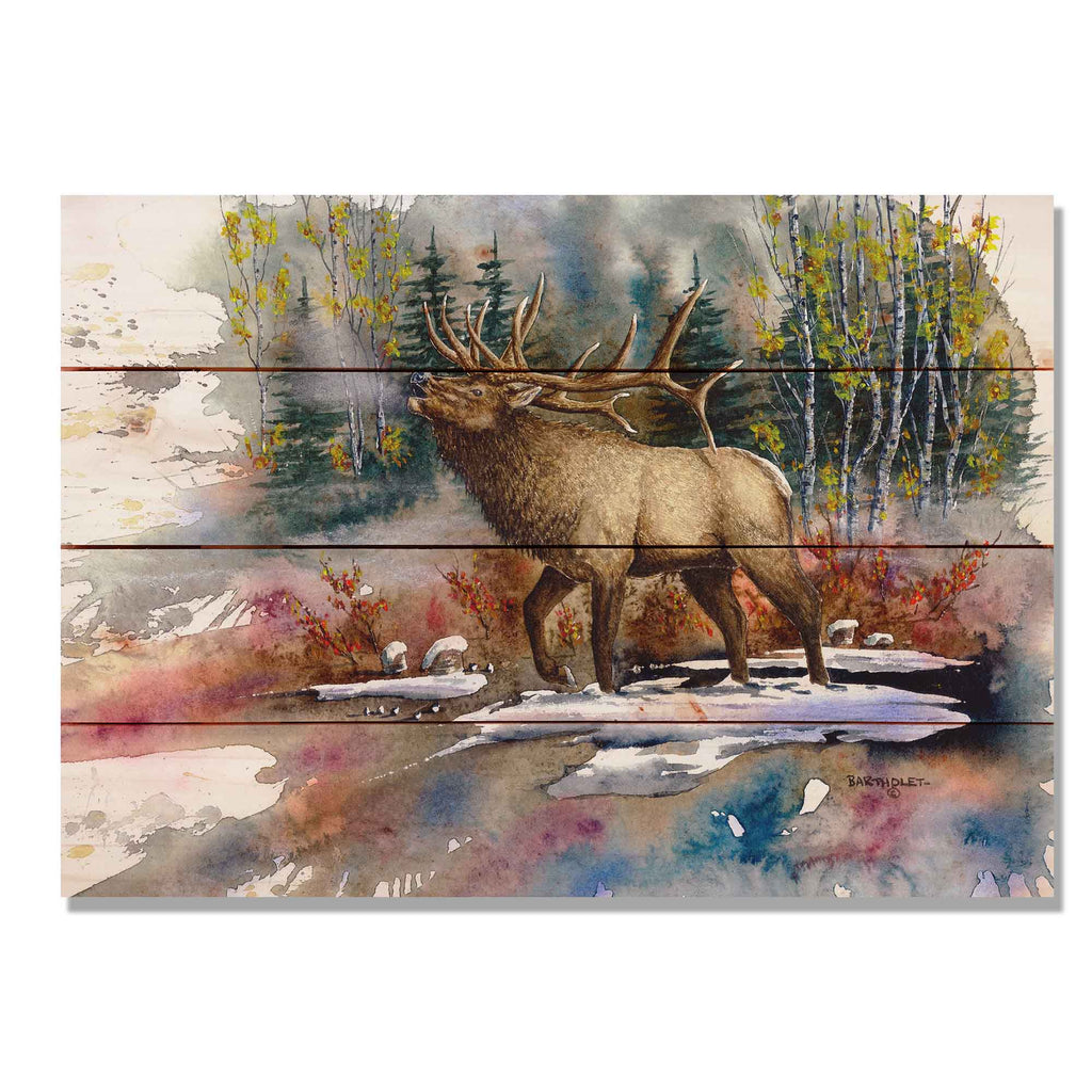 "Bartholet's Autumn Music - Classic Pine Wood Artist Series DaydreamHQ Pine Wall Art 20""x14"""