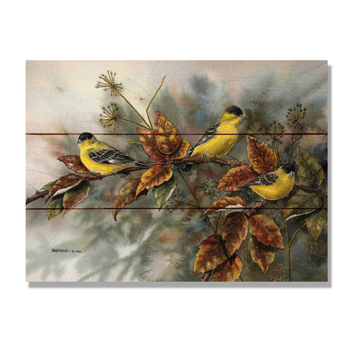Bartholet's Goldfinches - Wile E. Wood Art Signature Series™