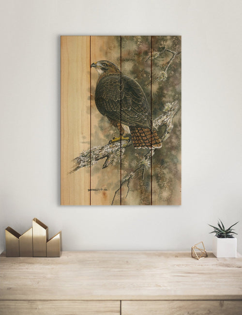 Bartholet's Red Tailed Hawk - Classic Pine Wood Artist Series DaydreamHQ Pine Wall Art