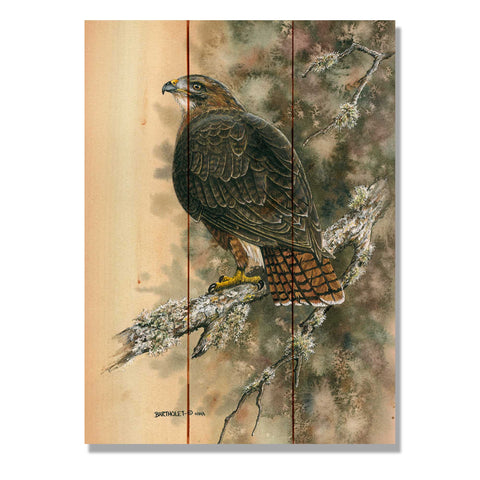 Bartholet's Red Tailed Hawk - Wile E. Wood Art Signature Series™