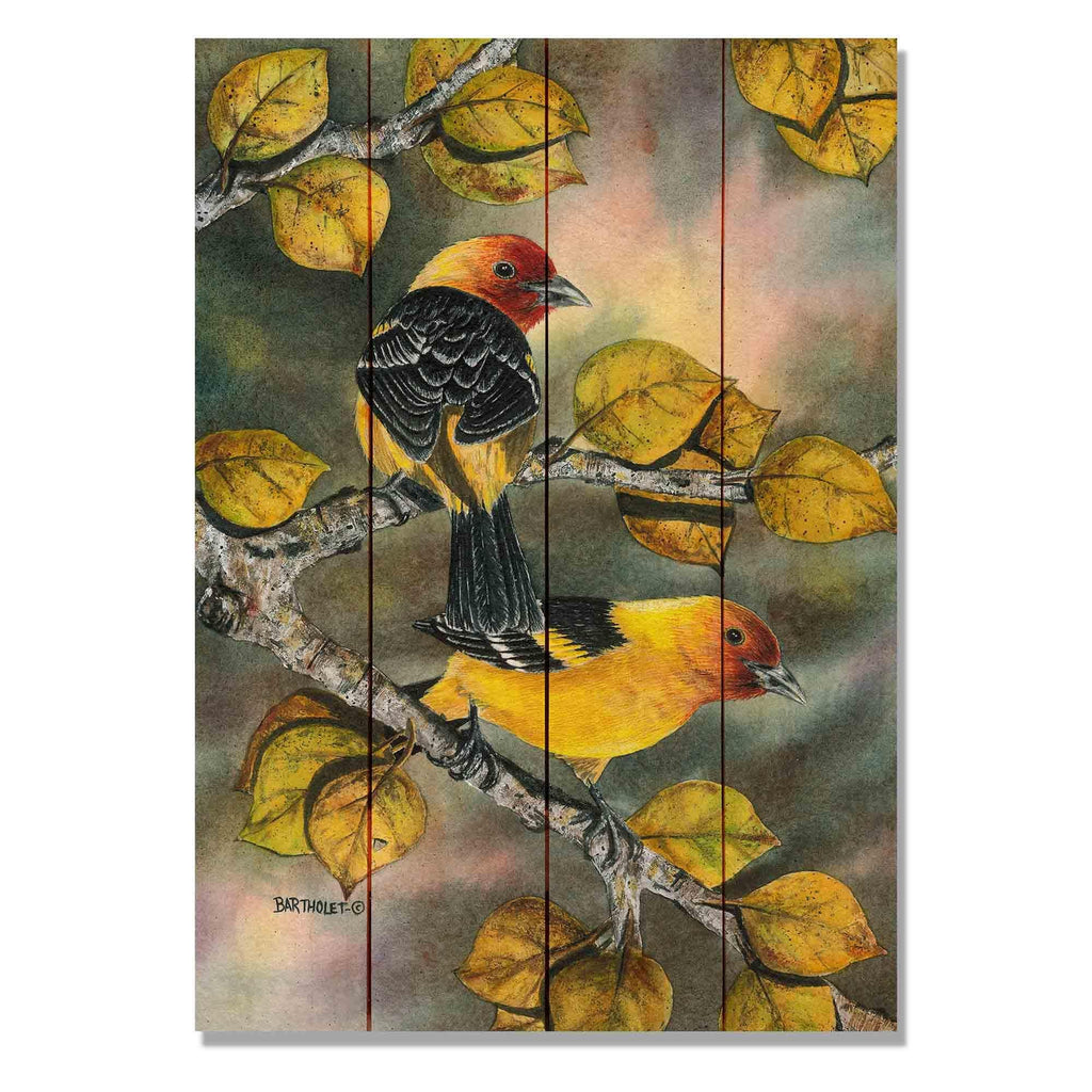 "Bartholet's Tanagers - Classic Pine Wood Artist Series DaydreamHQ Pine Wall Art 14""x20"""