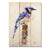 "Crouser's Blue Jay - Classic Pine Wood Artist Series DaydreamHQ Pine Wall Art 11""x15"""