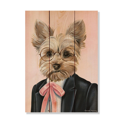 "Murray's Yorkie - Classic Pine Wood Artist Series DaydreamHQ Pine Wall Art 11""x15"""