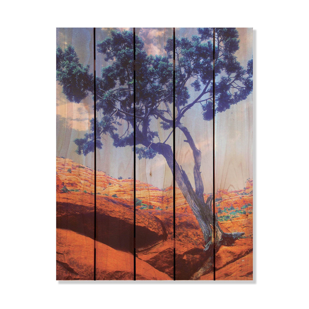 Desert Tree - Gizaun Art Outside by Mike FenceEscape 28x36