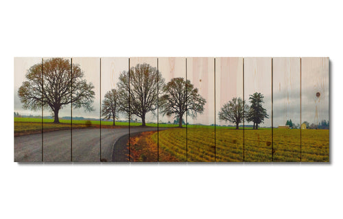 Old Country Road - Wood Wall Art DaydreamHQ FenceEscape 60x20