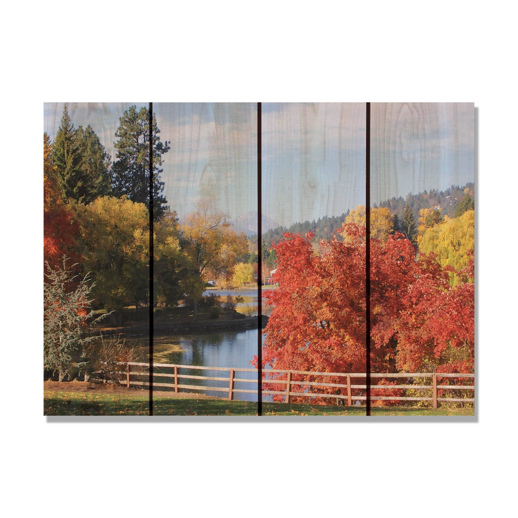 Fall Park - Colorful Tree Wood Wall Art DaydreamHQ FenceEscape 22x16