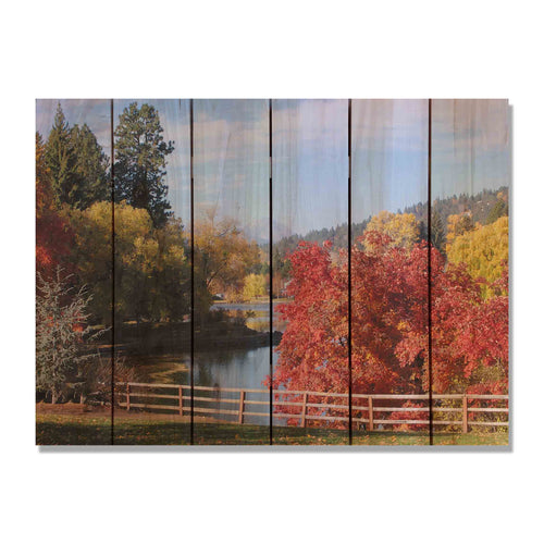 Fall Park - Colorful Tree Wood Wall Art DaydreamHQ FenceEscape 33x24