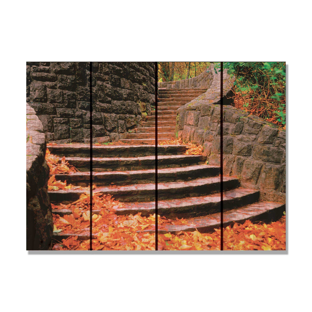 Fall Steps - Gizaun Art Outside by Mike FenceEscape 22x16