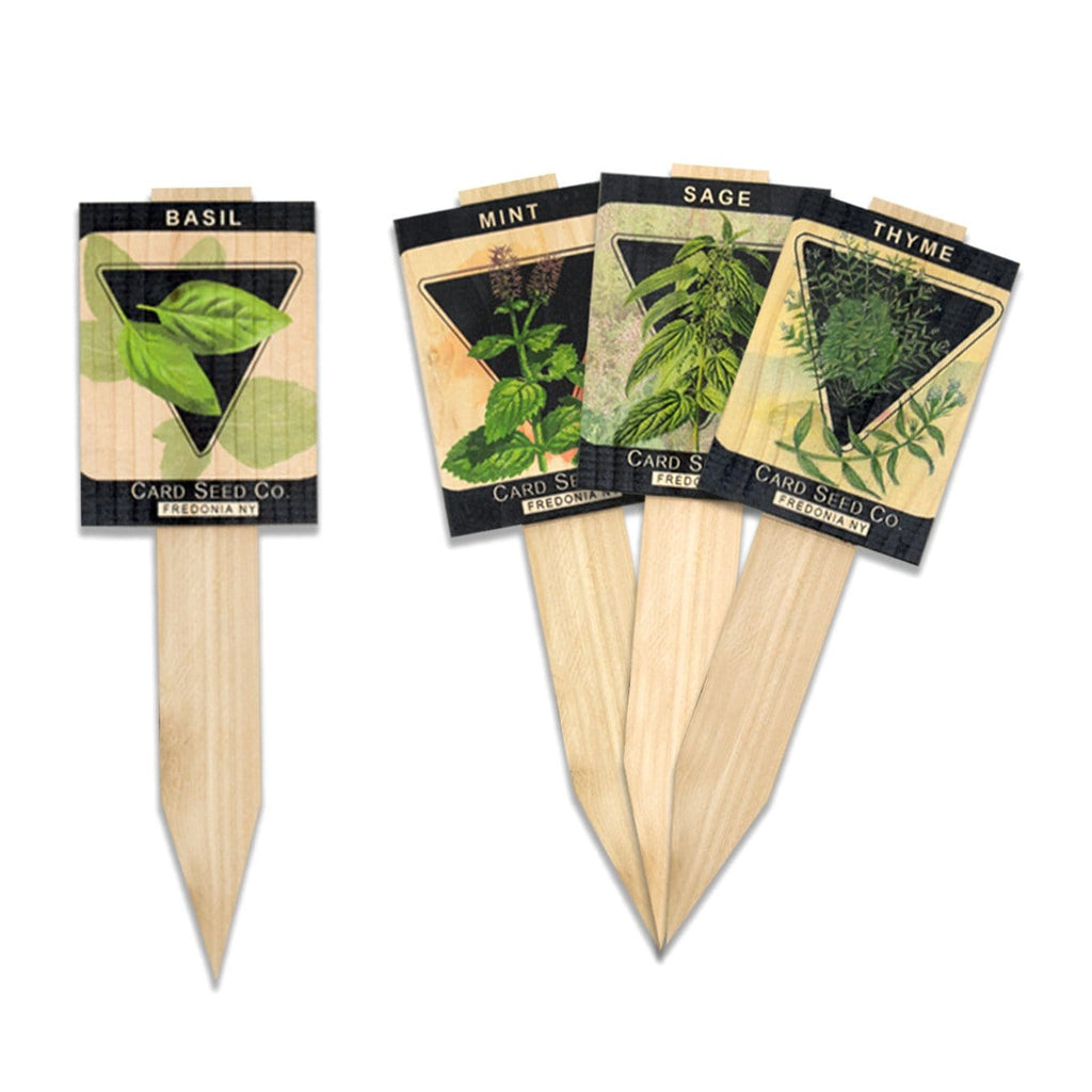 Vintage Garden Markers on Solid Wood (Mixed Herb Pack: Basil, Sage, Mint, Thyme) DaydreamHQ Garden Marker